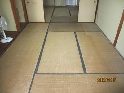 川井前20130214