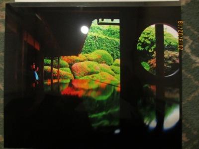 写真グランプリ20130218
