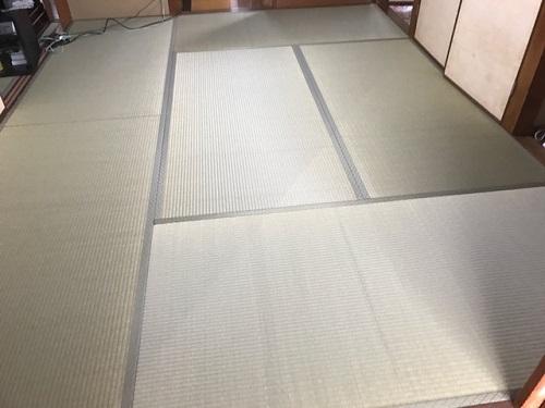 入江220181113