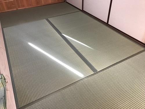 杉田1-120181229