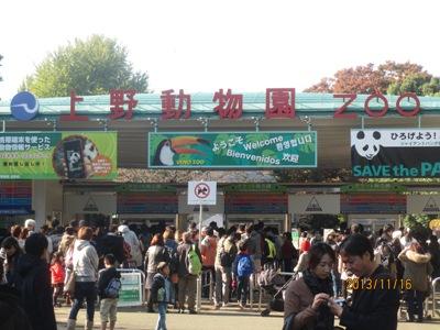 上野動物園20131116