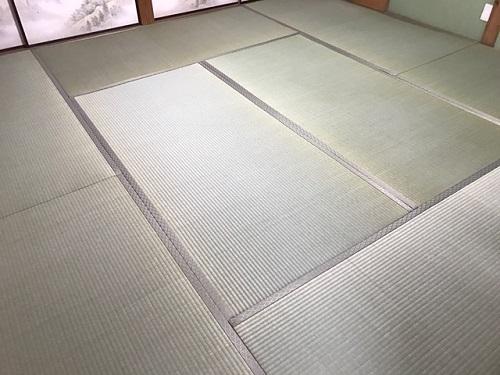 丸山20190208