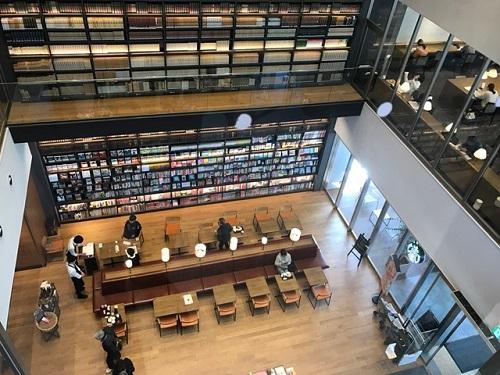 図書館20190224