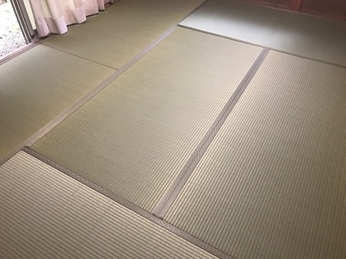 田口20190310