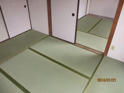 井谷20140121
