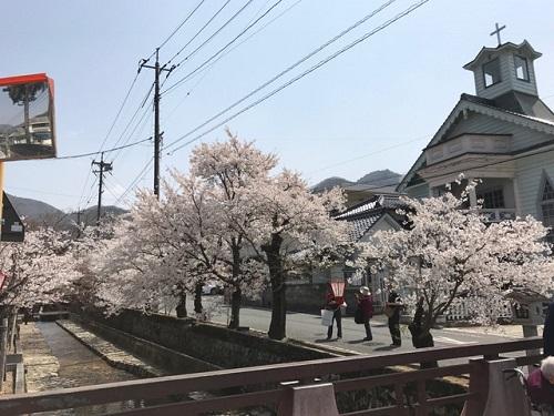 桜20190406