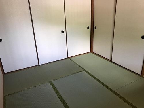 松山220190617