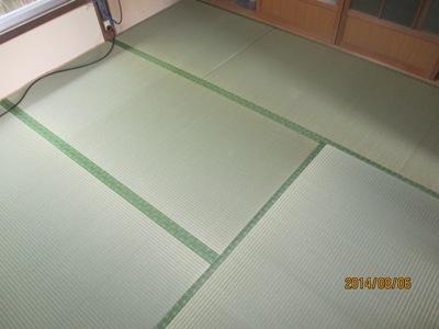 坂井杉田20140806