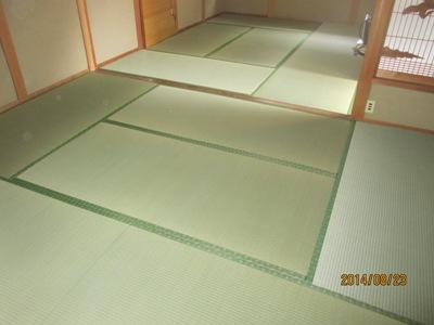 熊本20140823