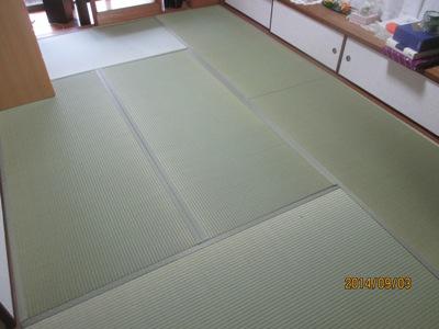 鵜田20140903