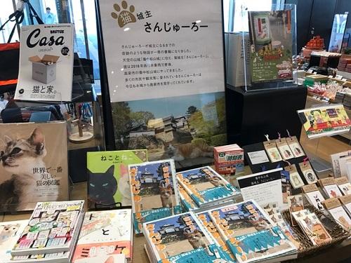 図書館20191017