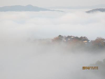 雲海松山城20141111