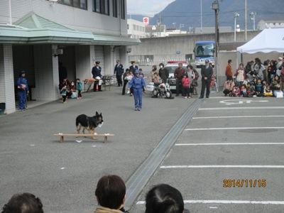 警察犬20141115