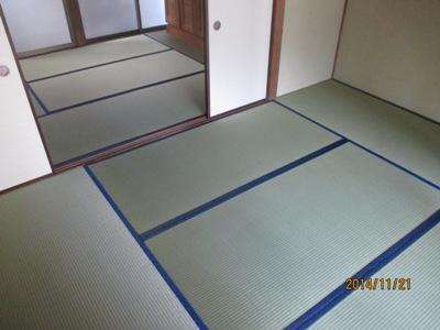 八木杉井20141121