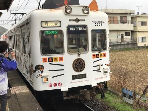 たま電車20200222