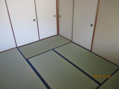 松山120141201