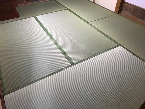梅の20200325