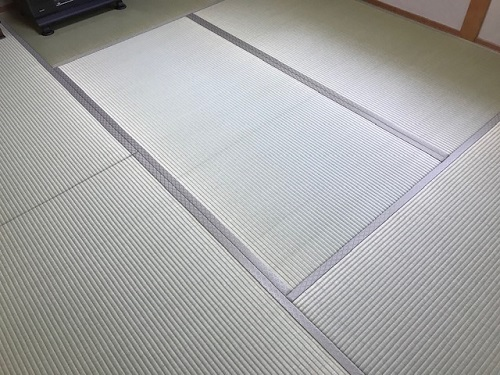 坂本20200508